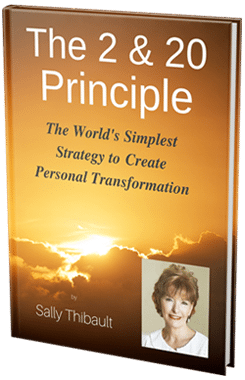The 2 & 20 Principles - e-book